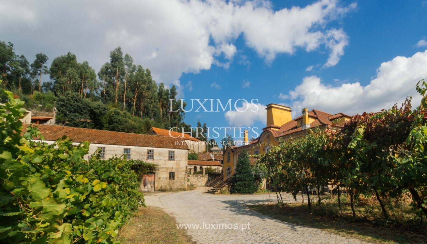 Sale: country house w/ typical architecture, Marco Canaveses, Portugal_100010