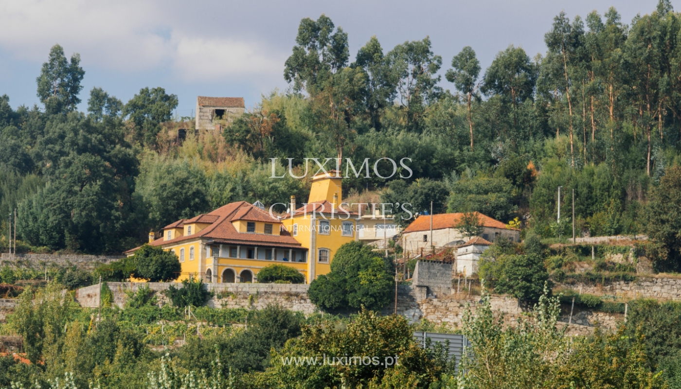 Sale: country house w/ typical architecture, Marco Canaveses, Portugal_100014