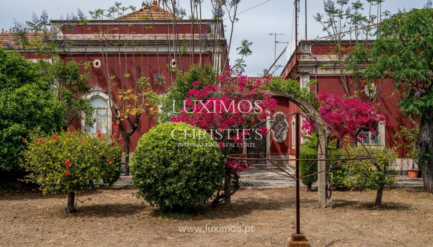 Venda de propriedade em Santa Bárbara de Nexe, Faro, Algarve_105689