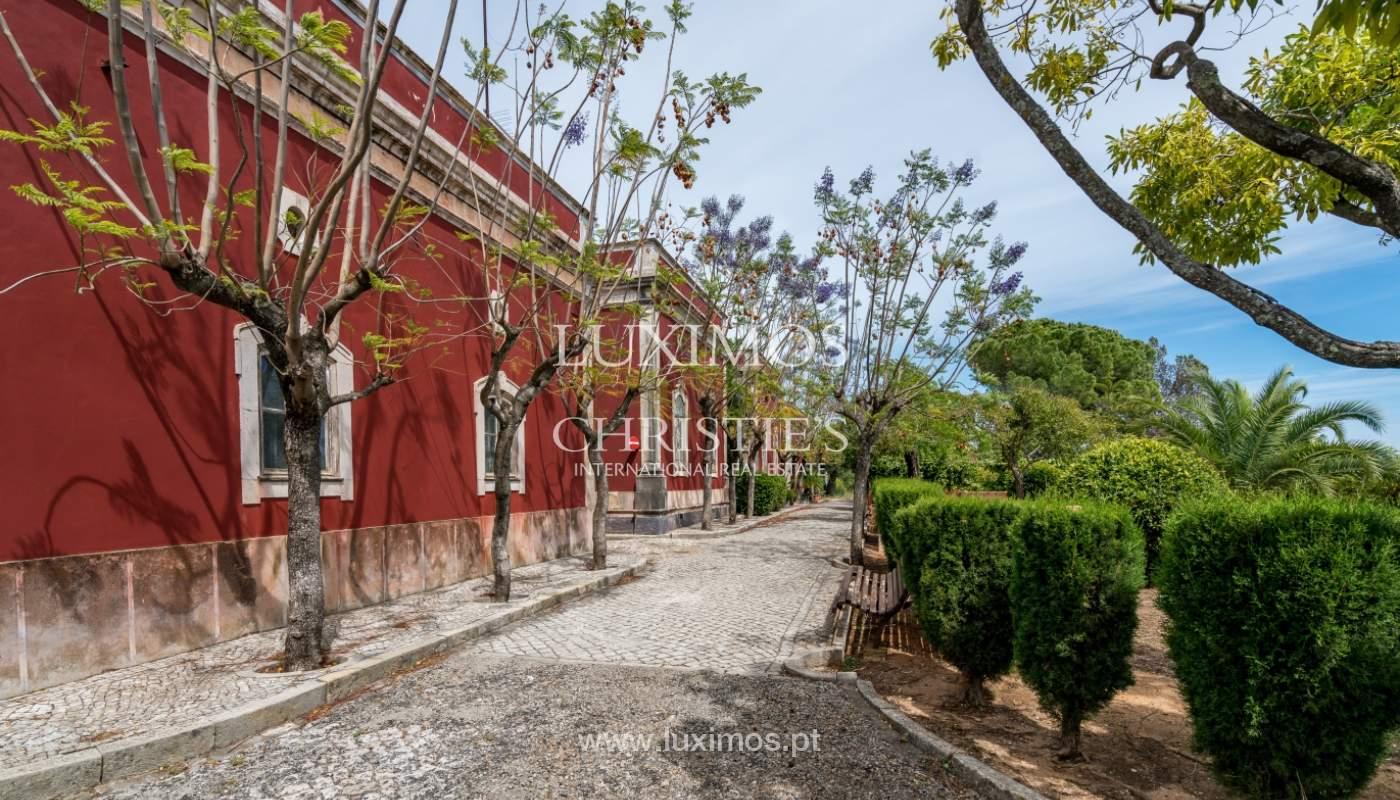 Venda de propriedade em Santa Bárbara de Nexe, Faro, Algarve_105694