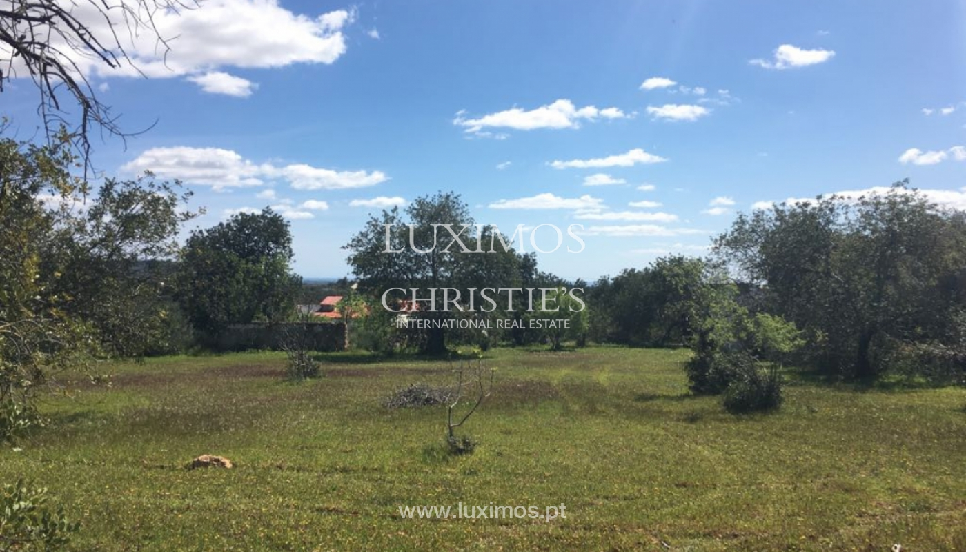 Plot land for sale, Cerro da Cabeça Alta, Loulé, Algarve, Portugal_120896