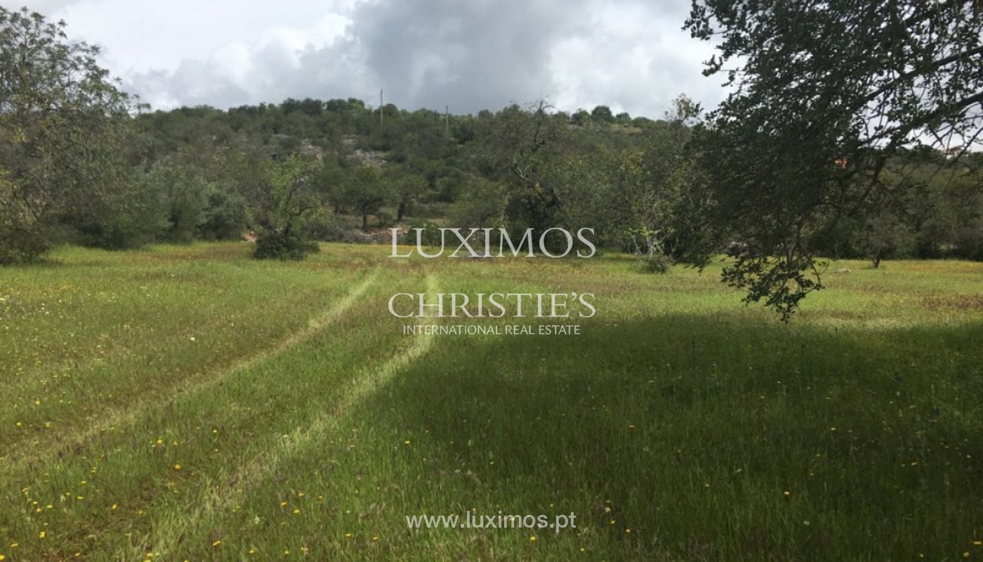 Plot land for sale, Cerro da Cabeça Alta, Loulé, Algarve, Portugal_120903
