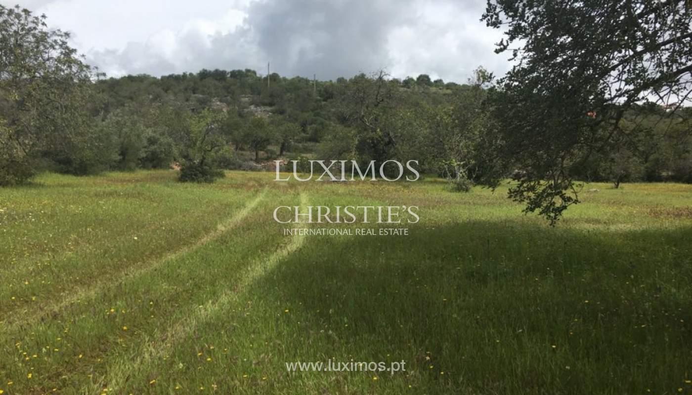 Venda de terreno, Cerro da Cabeça Alta, Loulé, Algarve_120903