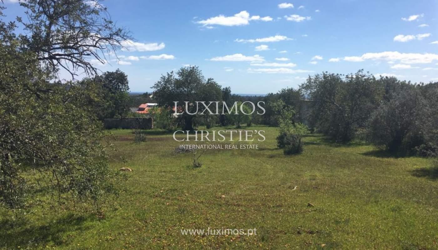 Venda de terreno, Cerro da Cabeça Alta, Loulé, Algarve_120908