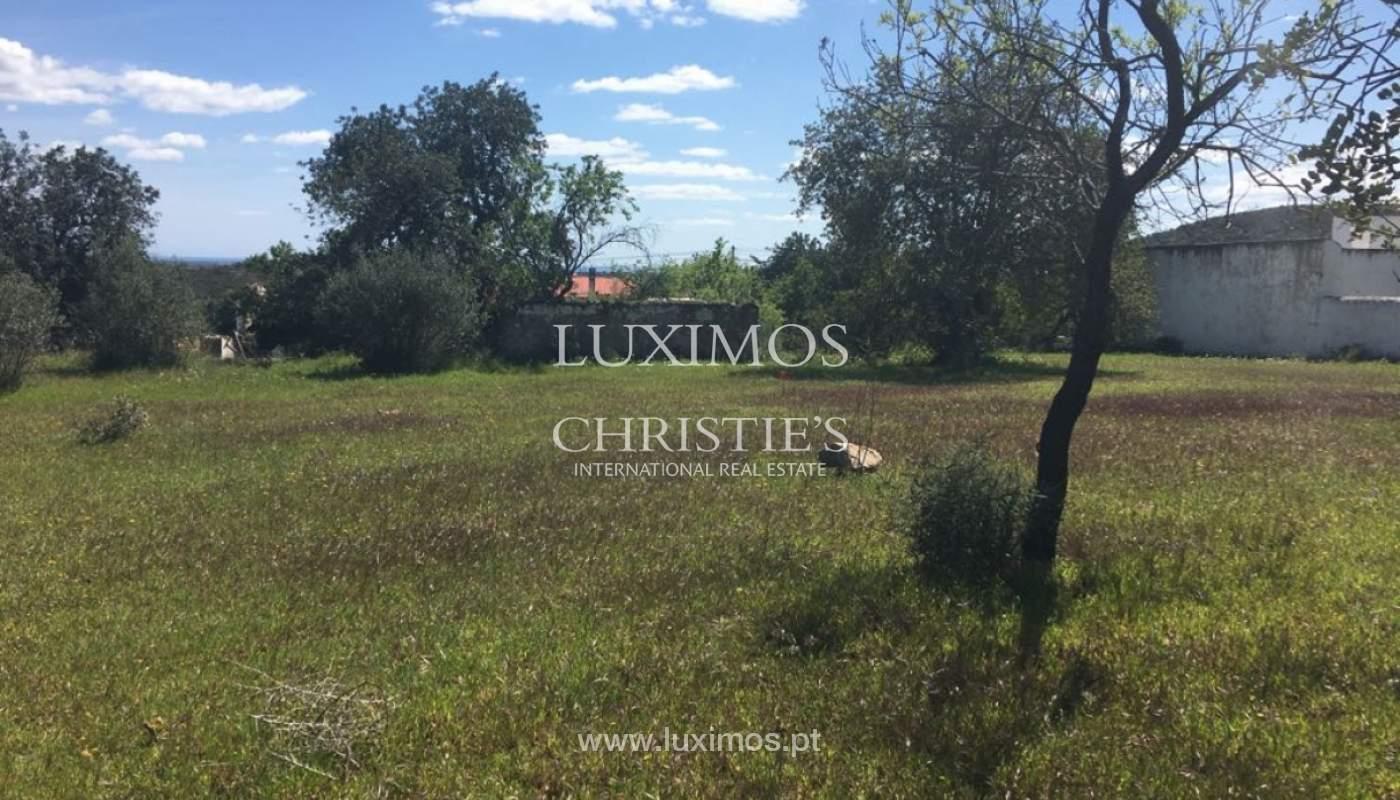 Venda de terreno, Cerro da Cabeça Alta, Loulé, Algarve_120909