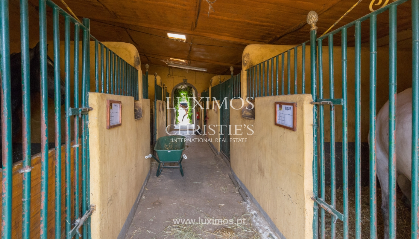 Farm with an equestrian school for sale, Loulé, Algarve, Portugal_121693