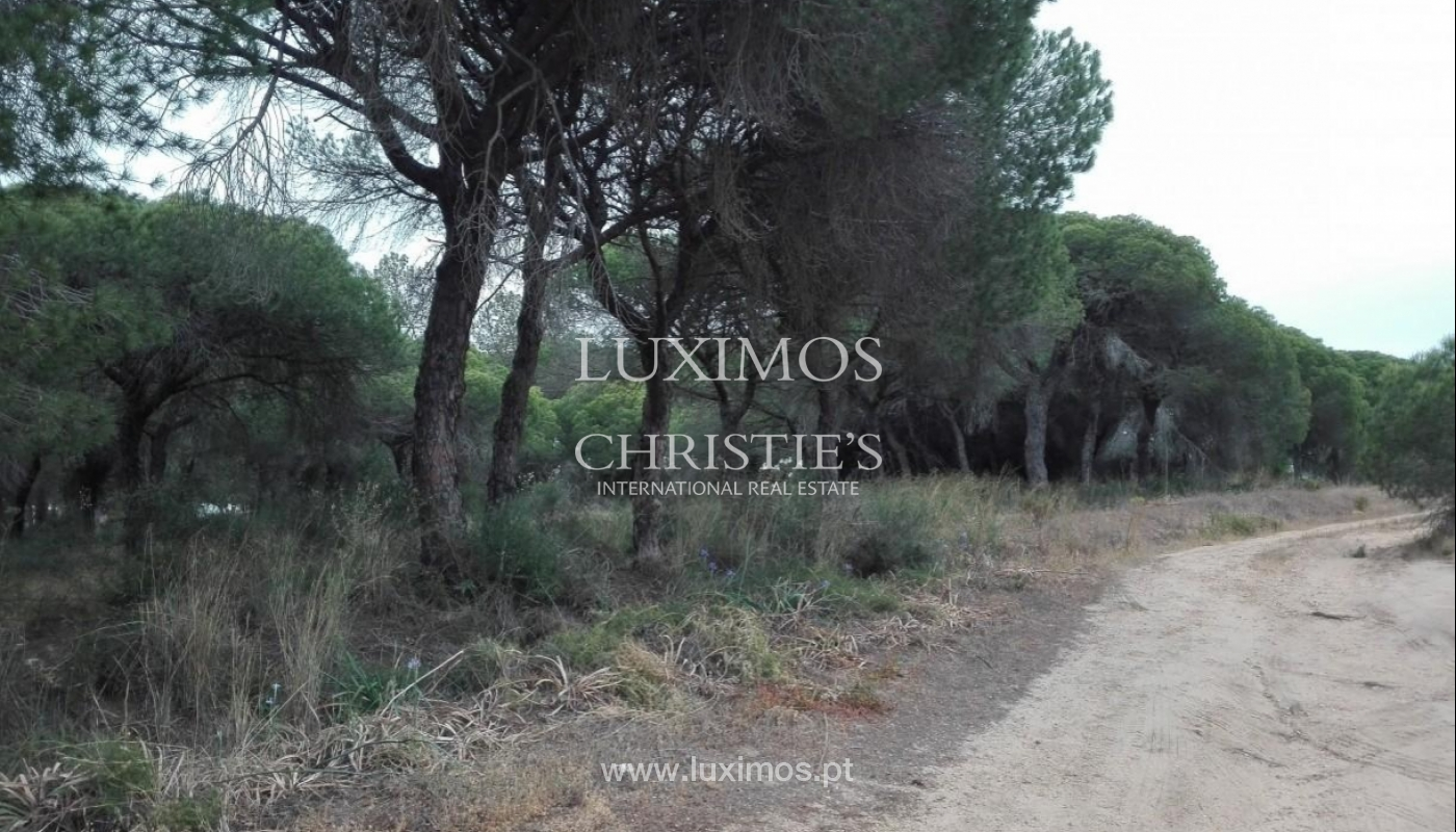 Plot area for sale, near the beach, Vale de Garrão, Algarve, Portugal_121722