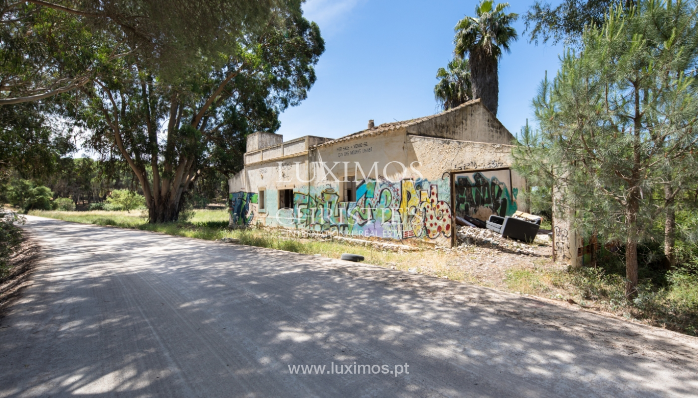 Plot area for sale, Natural Park of Ria Formosa, Algarve, Portugal_121756