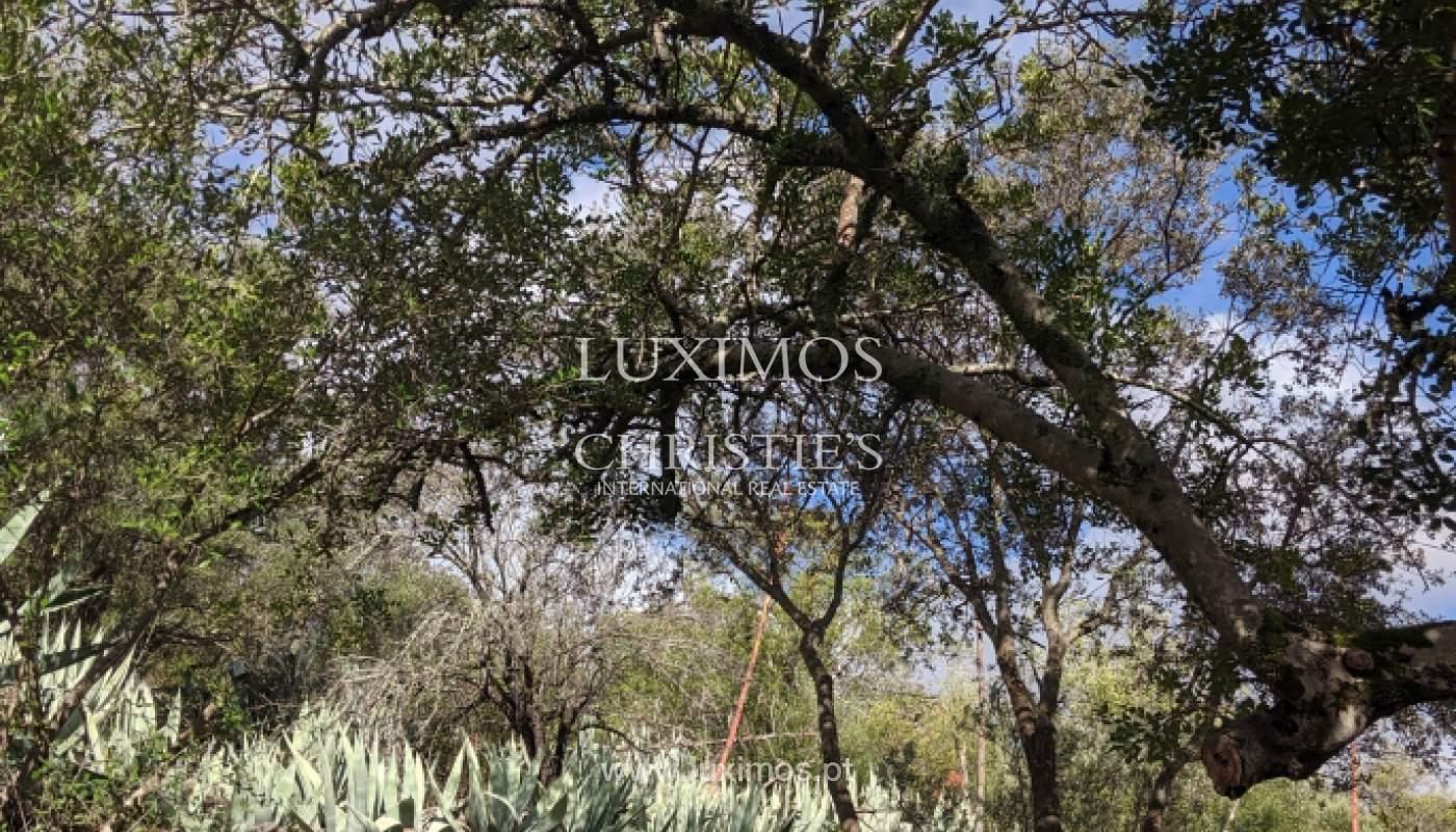 Verkauf von Grundstücken mit Ruine in Loulé, Algarve, Portugal_125852