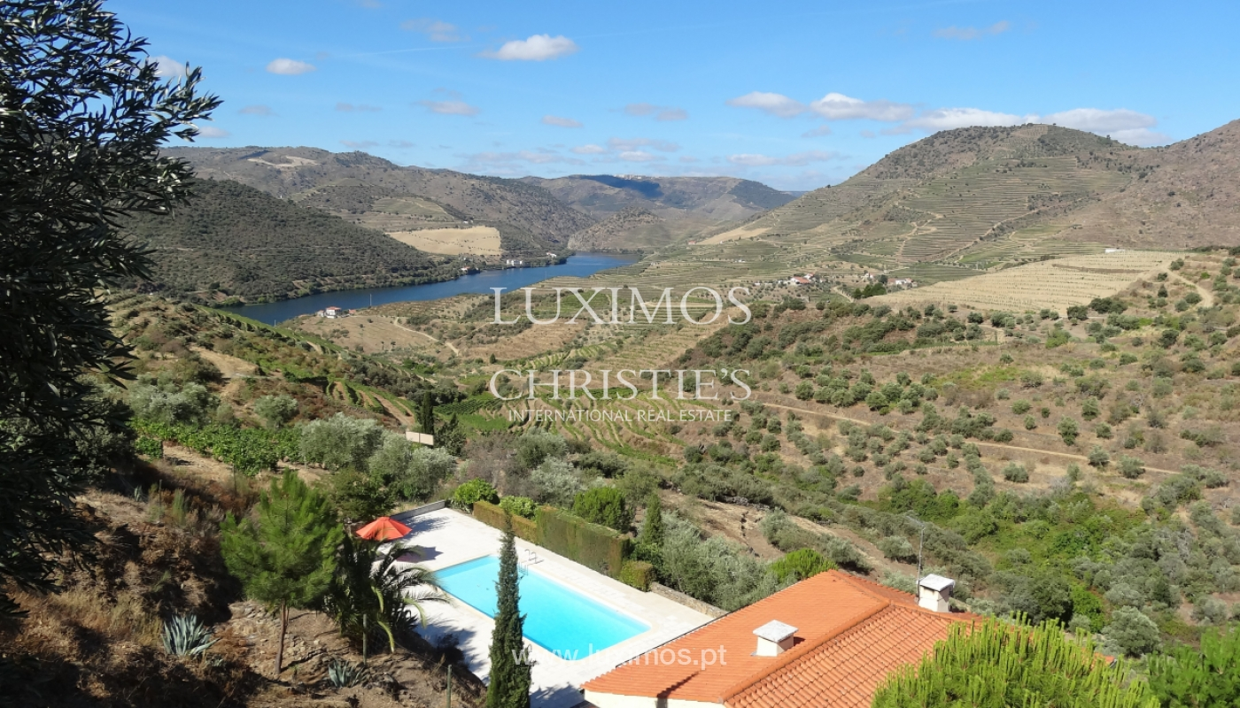 House with views to Douro river, Douro Demarcated Region, Portugal_129435