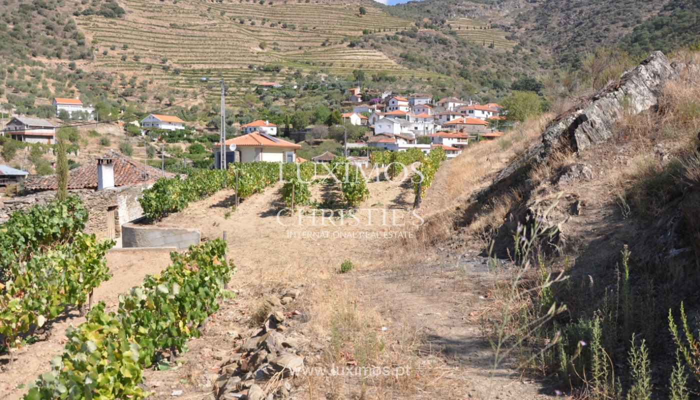House with views to Douro river, Douro Demarcated Region, Portugal_129436