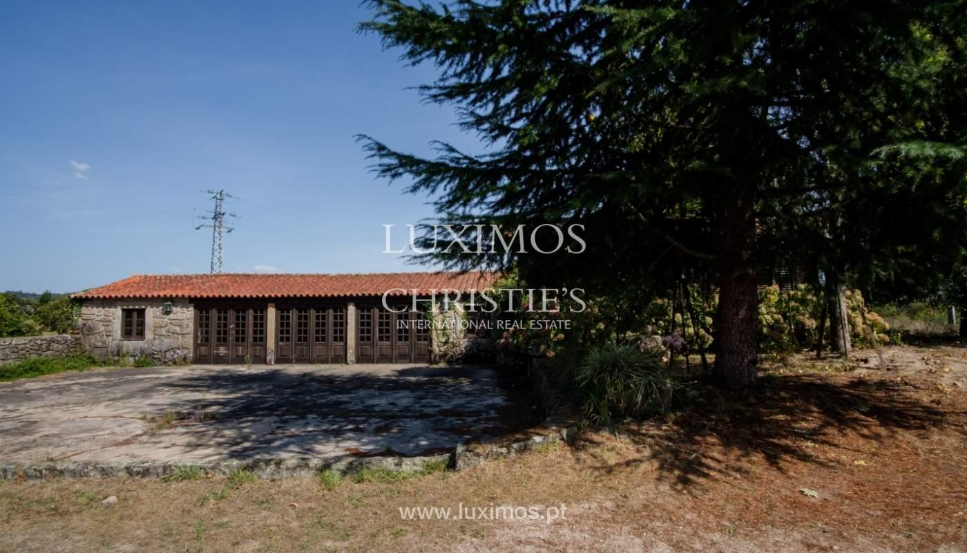 Ferme séculaire avec vignoble de vin vert, Barcelos, Portugal_131331