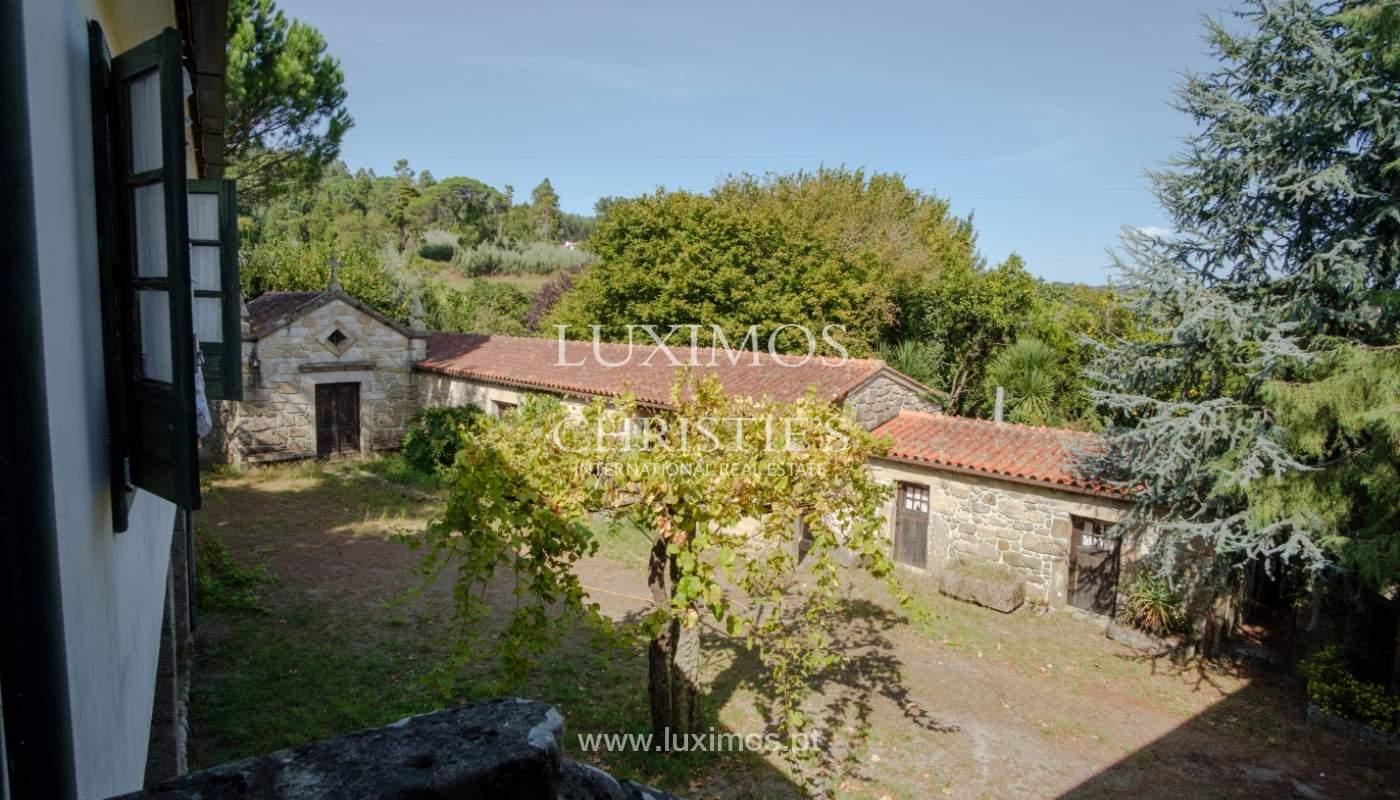 Ferme séculaire avec vignoble de vin vert, Barcelos, Portugal_131333