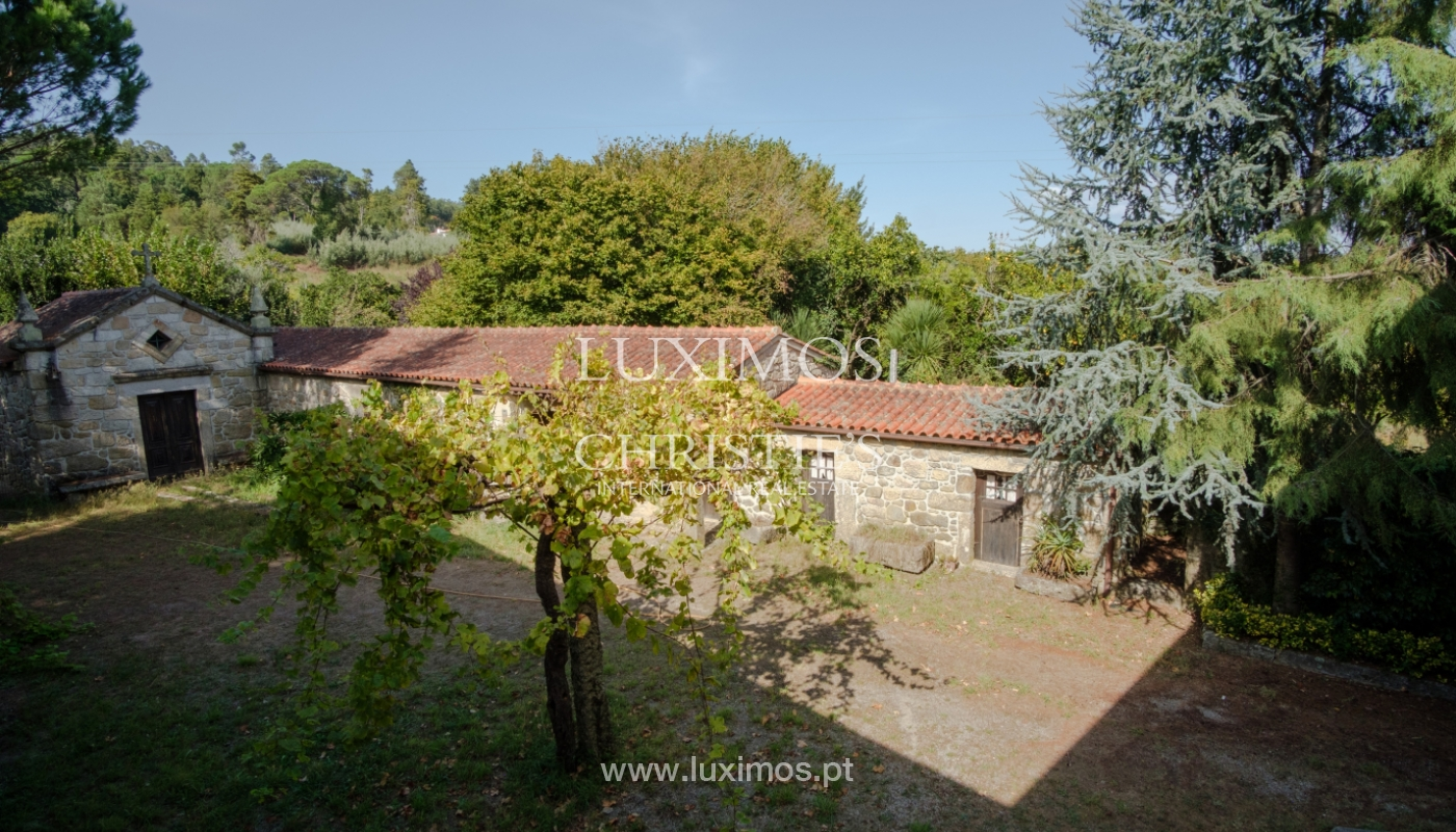 Ferme séculaire avec vignoble de vin vert, Barcelos, Portugal_131355