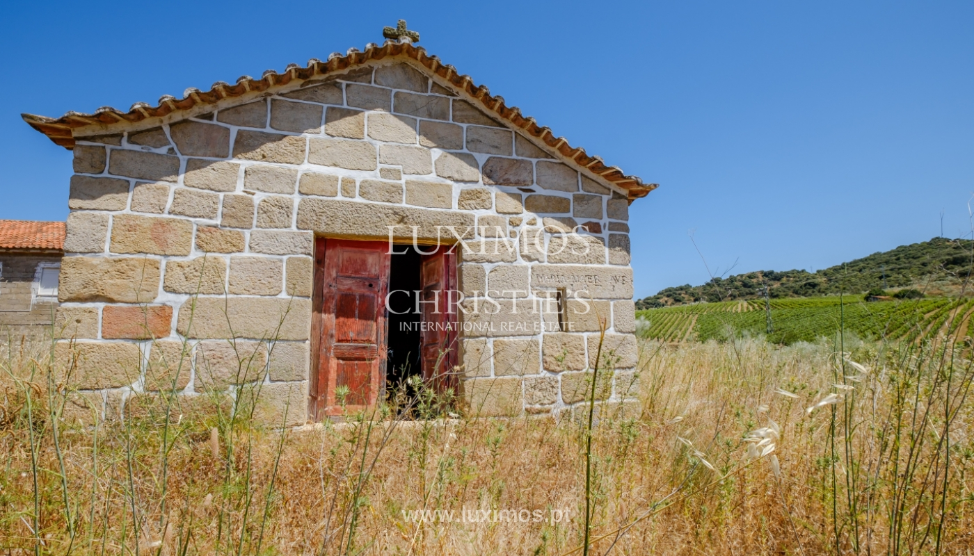 Sale: agricultural property in the region of Douro Superior, Portugal_143802