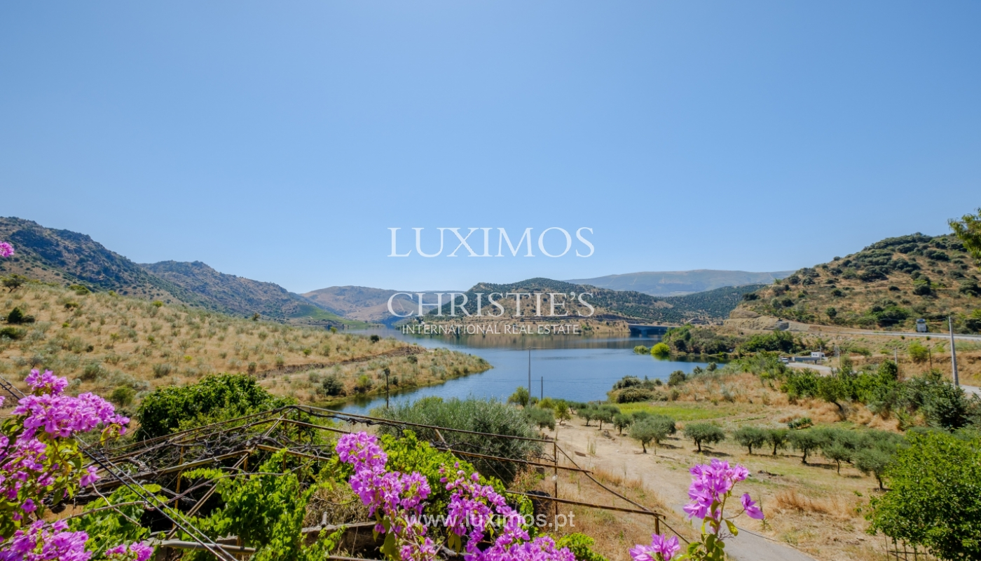 Sale: agricultural property in the region of Douro Superior, Portugal_143827