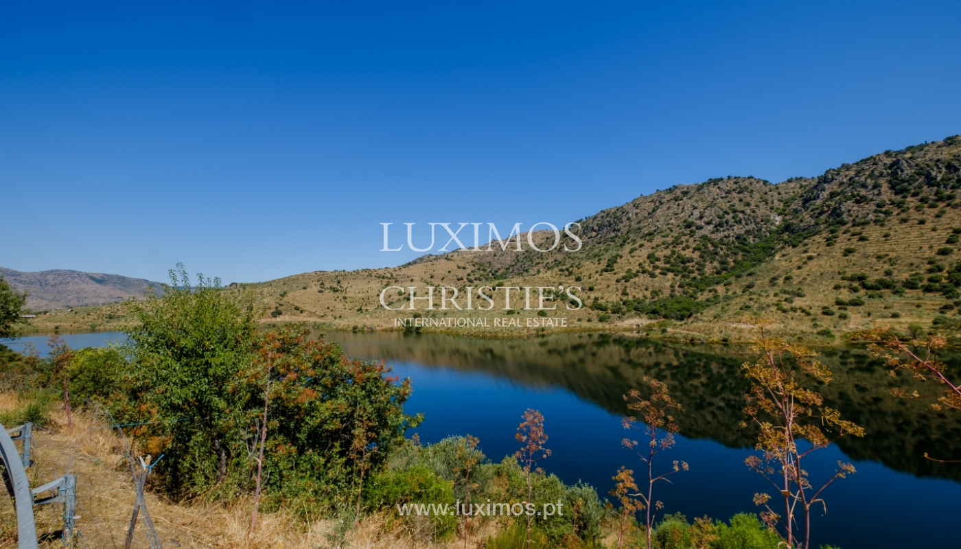 Sale: agricultural property in the region of Douro Superior, Portugal_143853