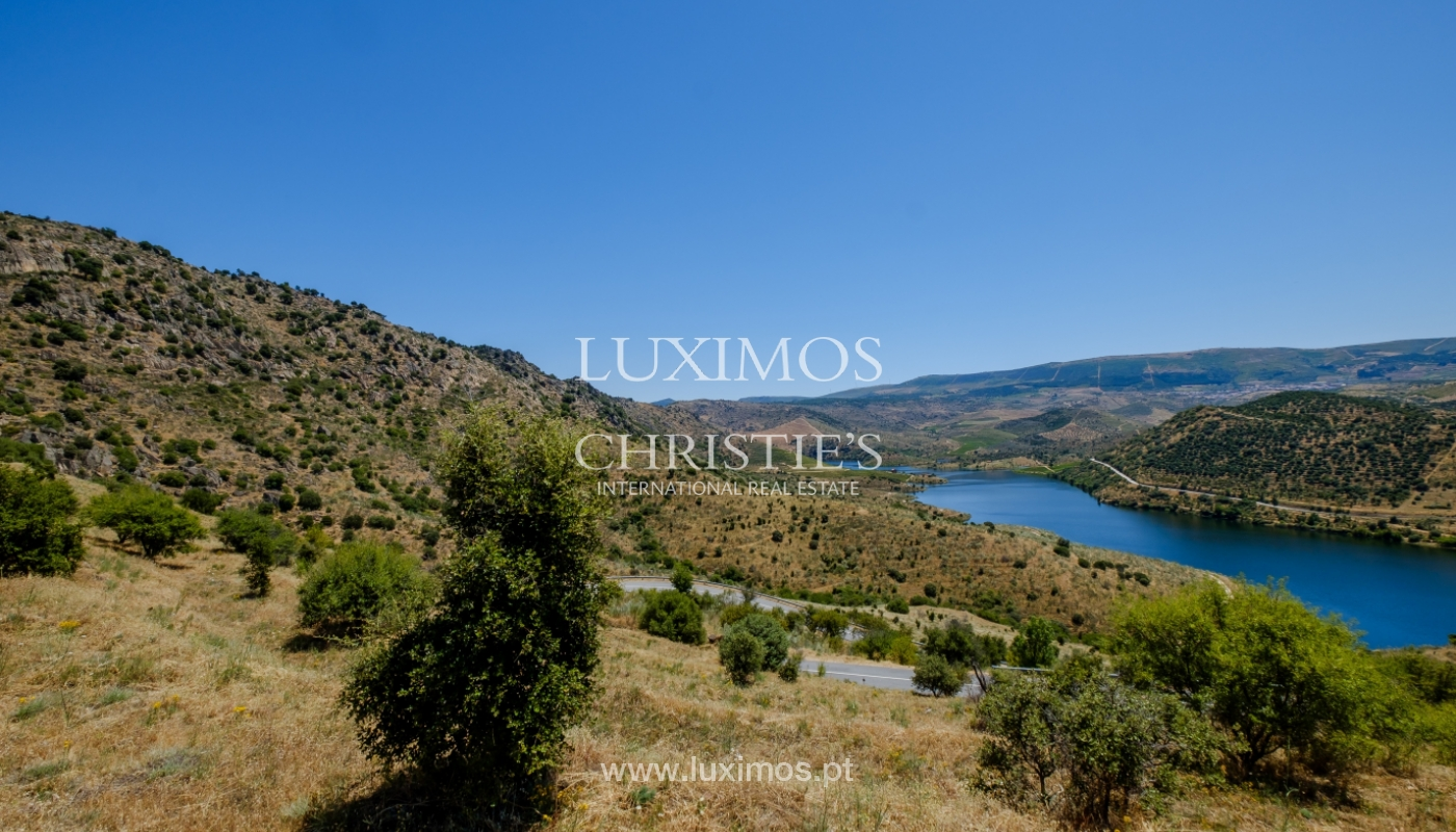 Sale: agricultural property in the region of Douro Superior, Portugal_143859