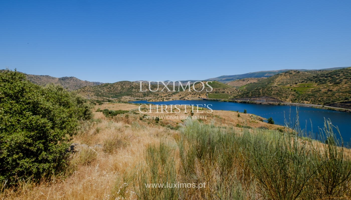 Sale: agricultural property in the region of Douro Superior, Portugal_143861