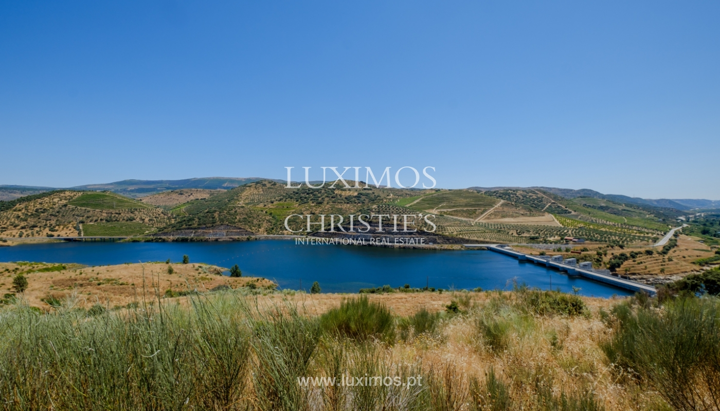 Sale: agricultural property in the region of Douro Superior, Portugal_143862