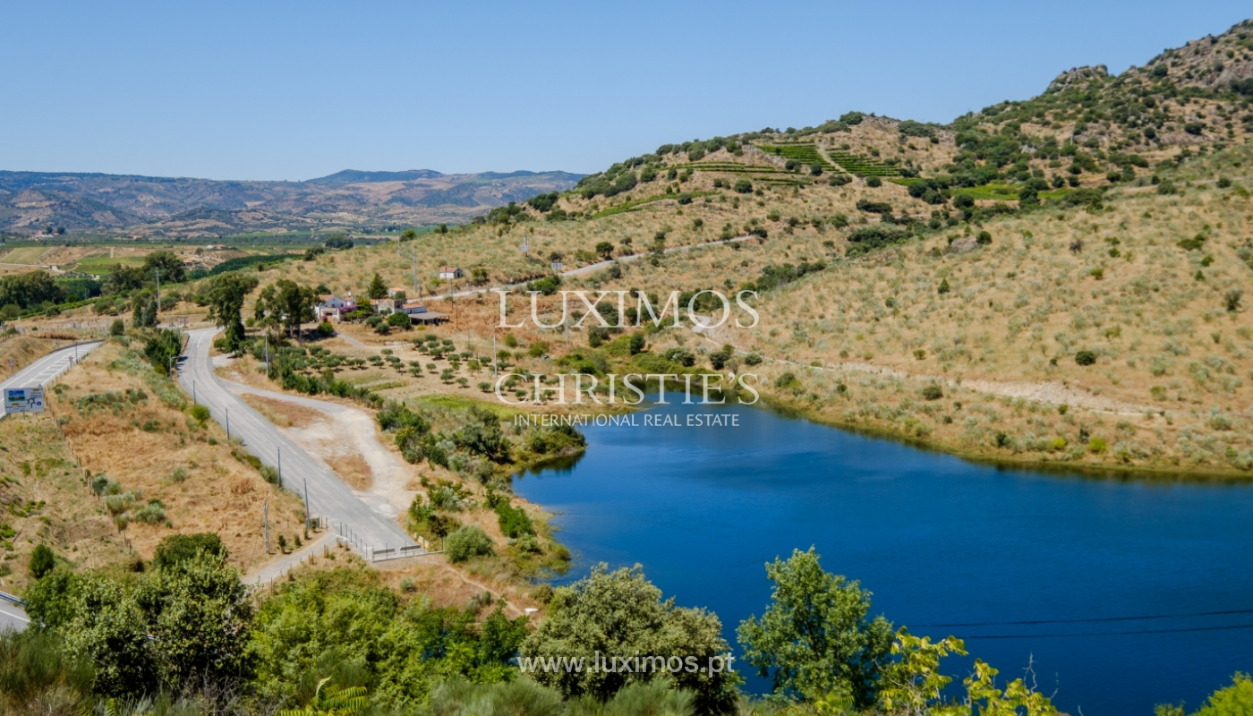 Sale: agricultural property in the region of Douro Superior, Portugal_143866