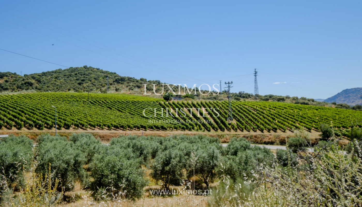 Sale: agricultural property in the region of Douro Superior, Portugal_143869