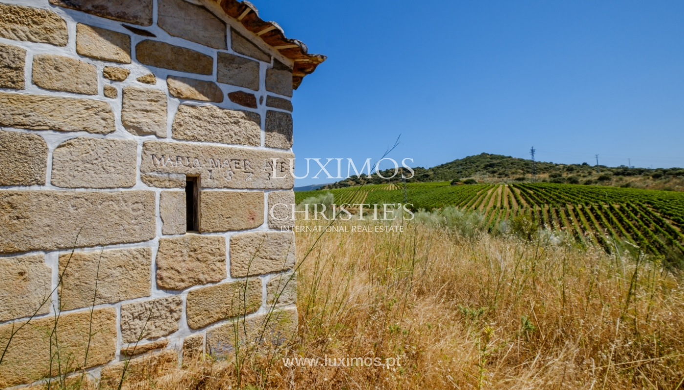 Sale: agricultural property in the region of Douro Superior, Portugal_143873
