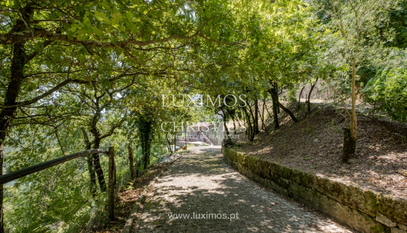 Farm overlooking the Douro River, for sale, at Cinfães, Portugal_144062