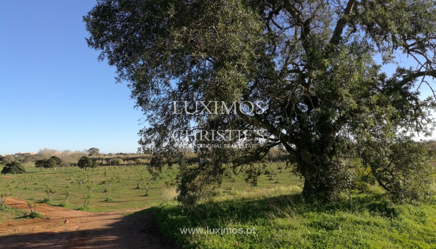 9 ha plot of land, project approved, Quarteira, Algarve Portugal_144356
