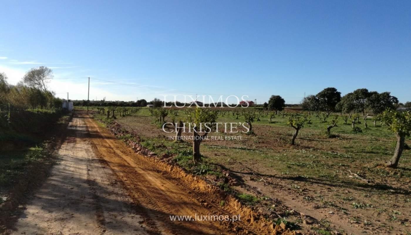 9 ha terreno con proyecto aprobado, Quarteira, Algarve, Portugal _144362