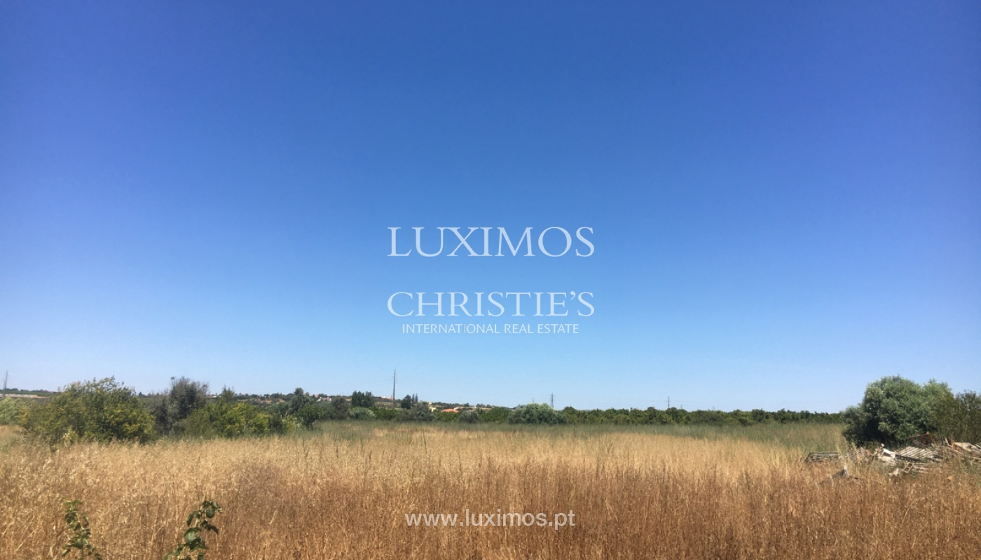 Farm and plot of land with ruin, Norinha, Lagoa, Algarve_144873
