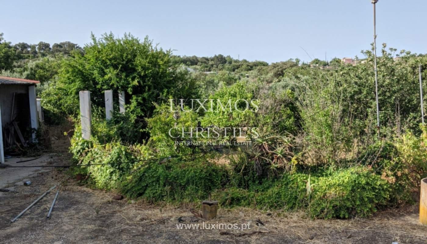 4-Schlafzimmer-Villa, mit großem Grundstück, São Brás de Alportel, Algarve_146332