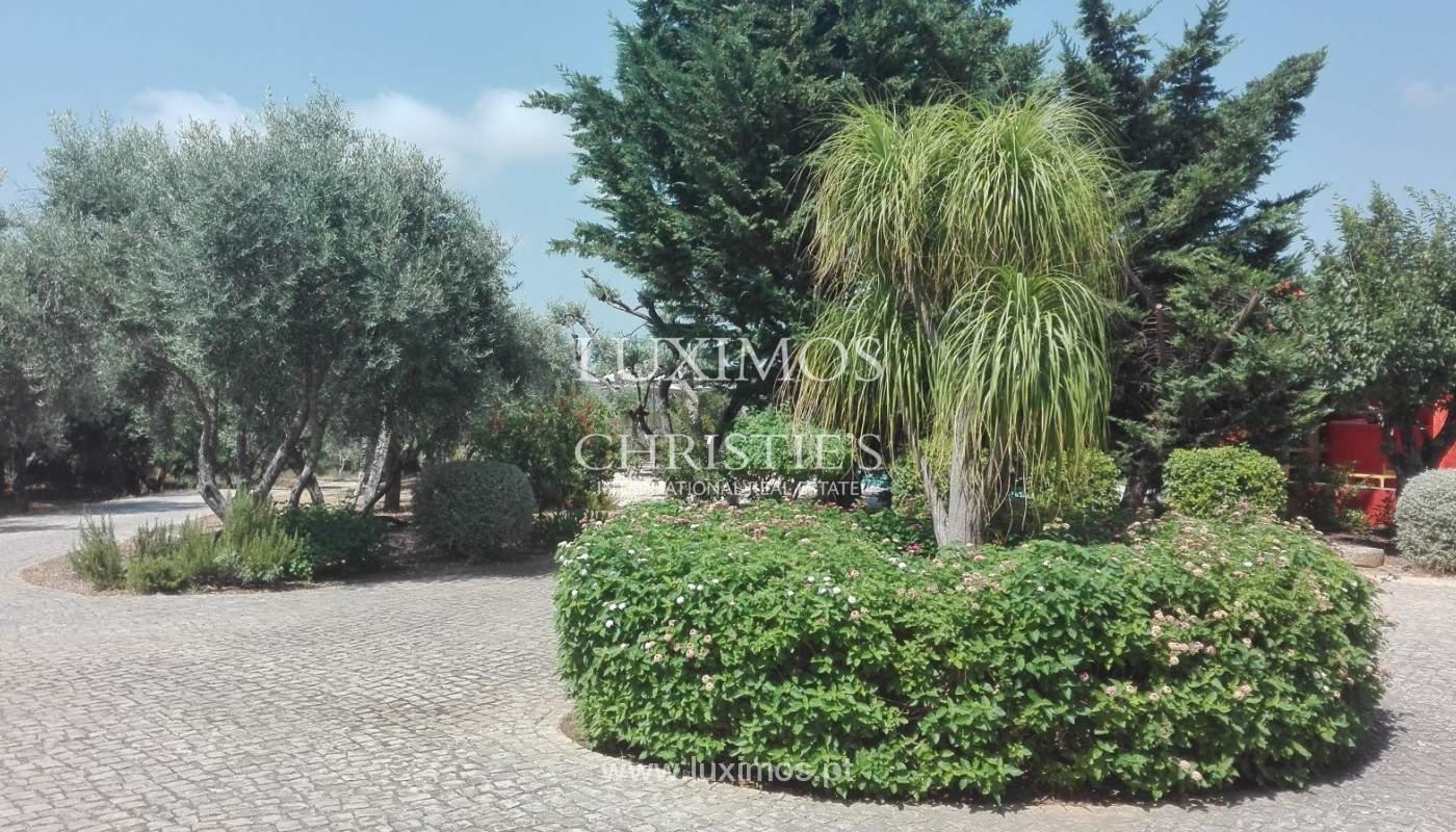Farm with 2 houses, pool and garden, São Brás de Alportel, Algarve_149703