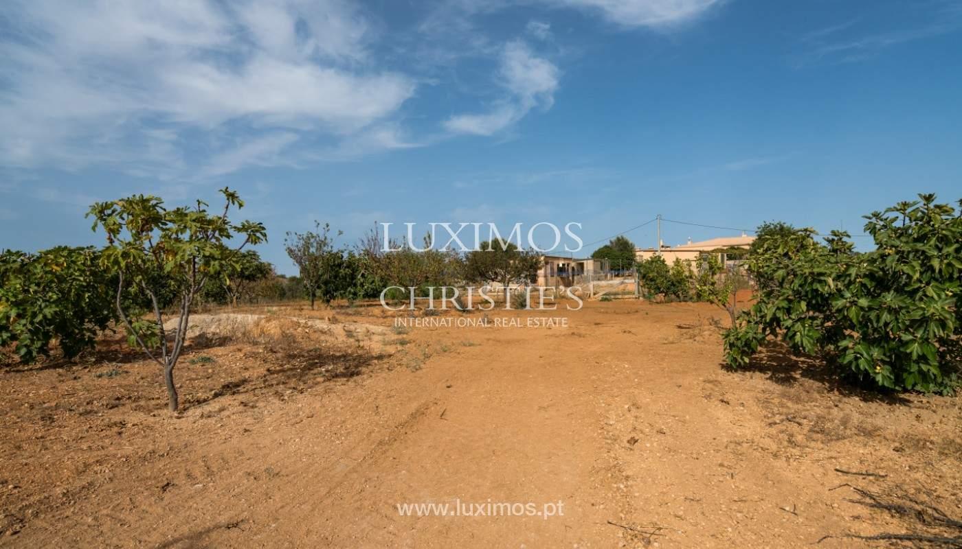 Bauernhof mit Villa mit 3 Schlafzimmern, Pool und Garten, zu verkaufen, Lagoa, Algarve_150011