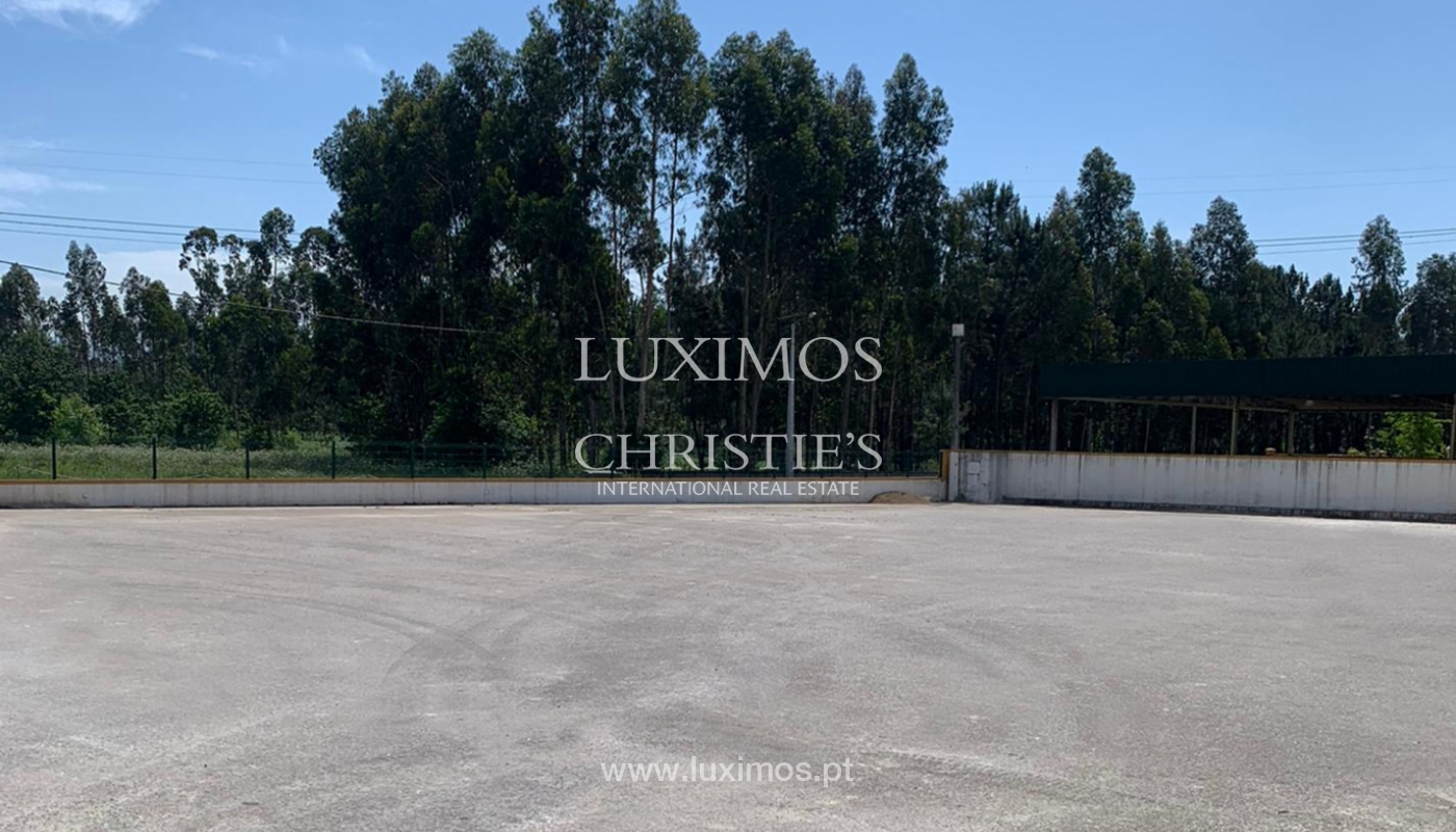 Equestrian Centre, for sale, in Oliveira de Azeméis, Portugal_150037