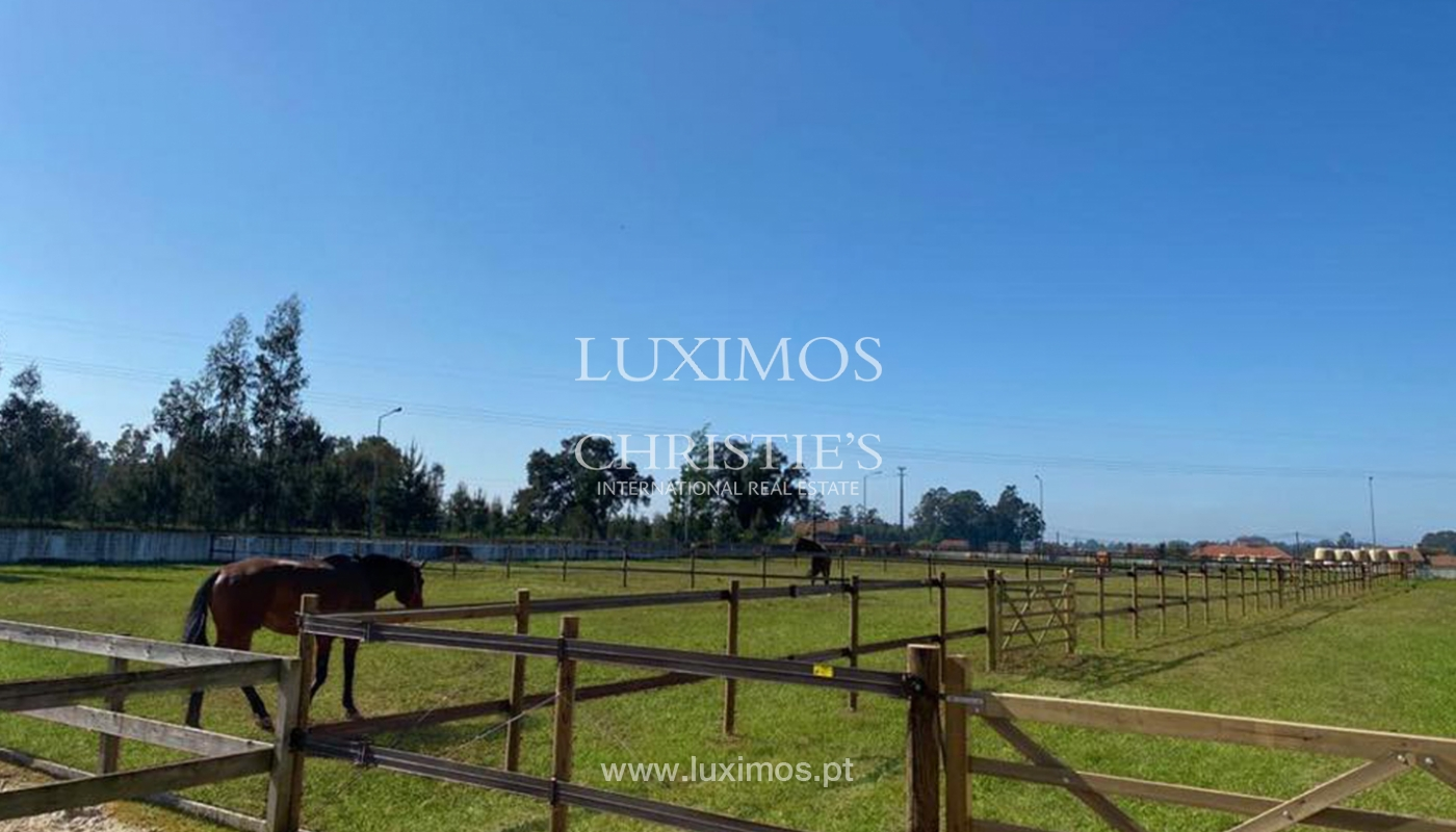 Equestrian Centre, for sale, in Oliveira de Azeméis, Portugal_150039