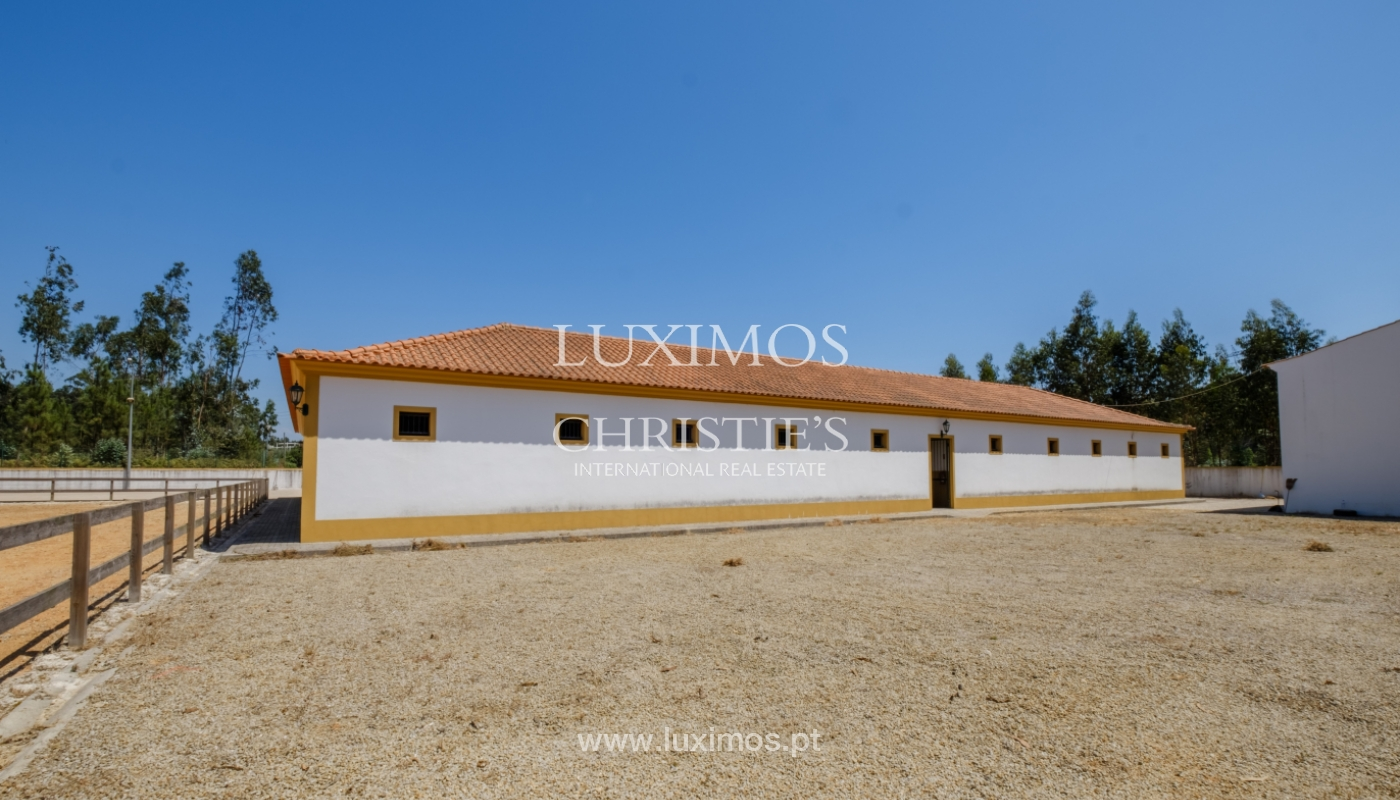 Equestrian Centre, for sale, in Oliveira de Azeméis, Portugal_150040