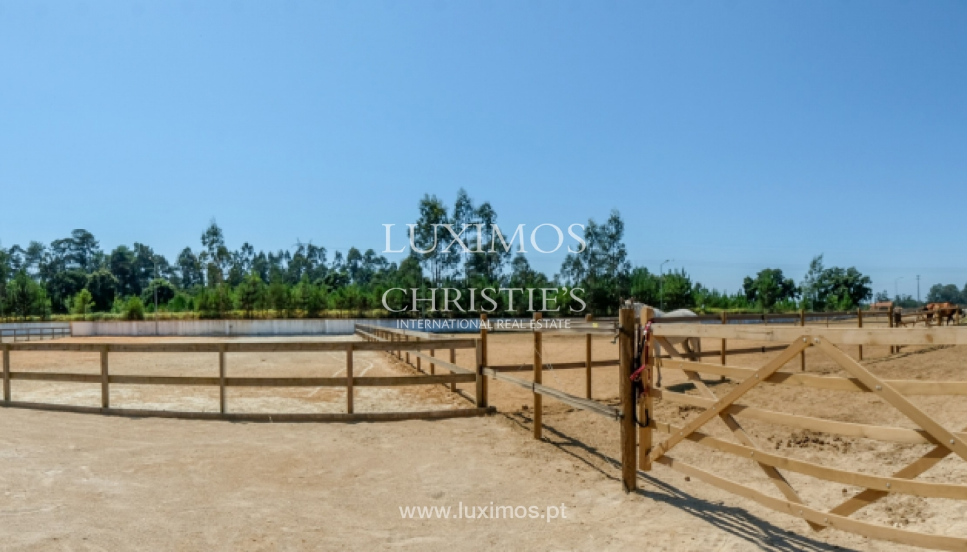 Equestrian Centre, for sale, in Oliveira de Azeméis, Portugal_150043