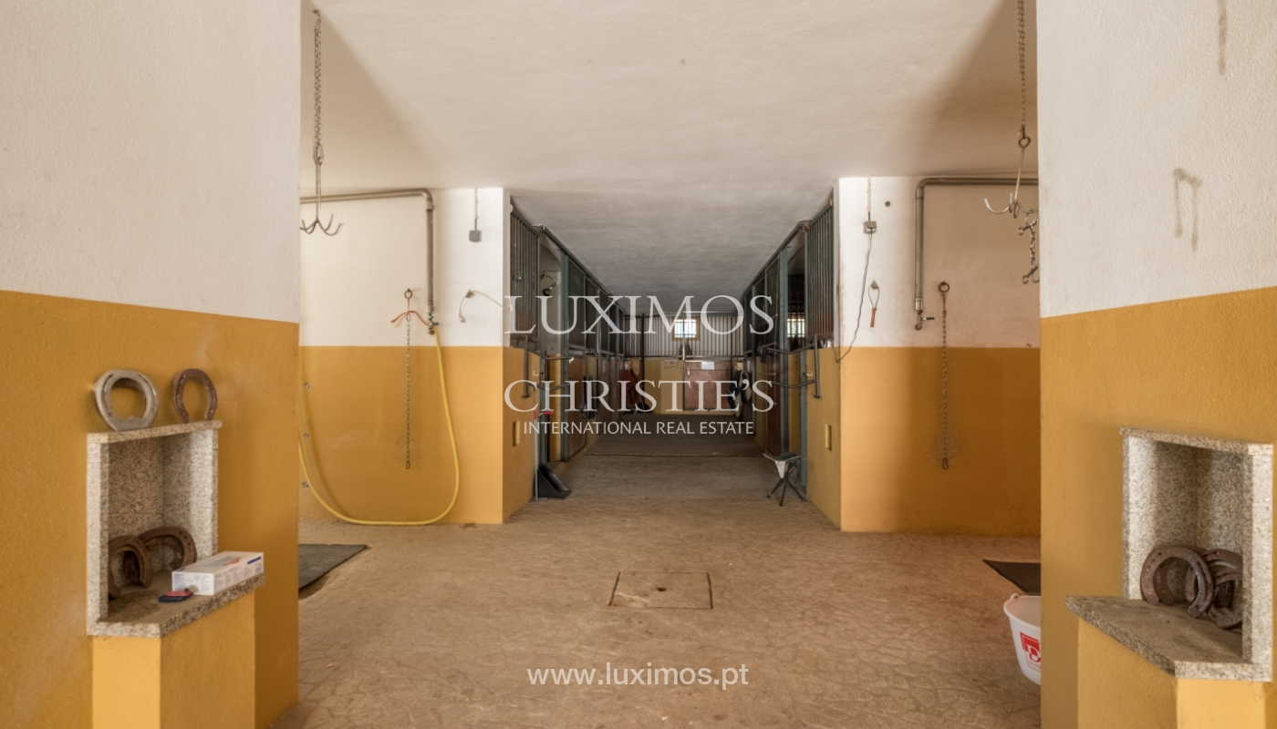 Equestrian Centre, for sale, in Oliveira de Azeméis, Portugal_150054