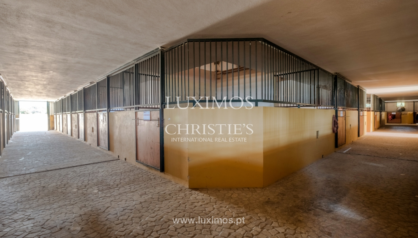 Equestrian Centre, for sale, in Oliveira de Azeméis, Portugal_150057