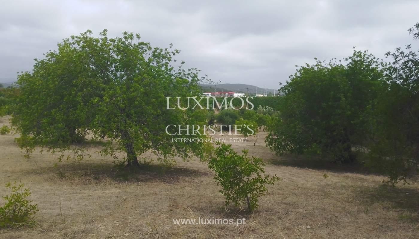 Terreno com possbilidade de construção, Moncarapacho, Algarve_154458