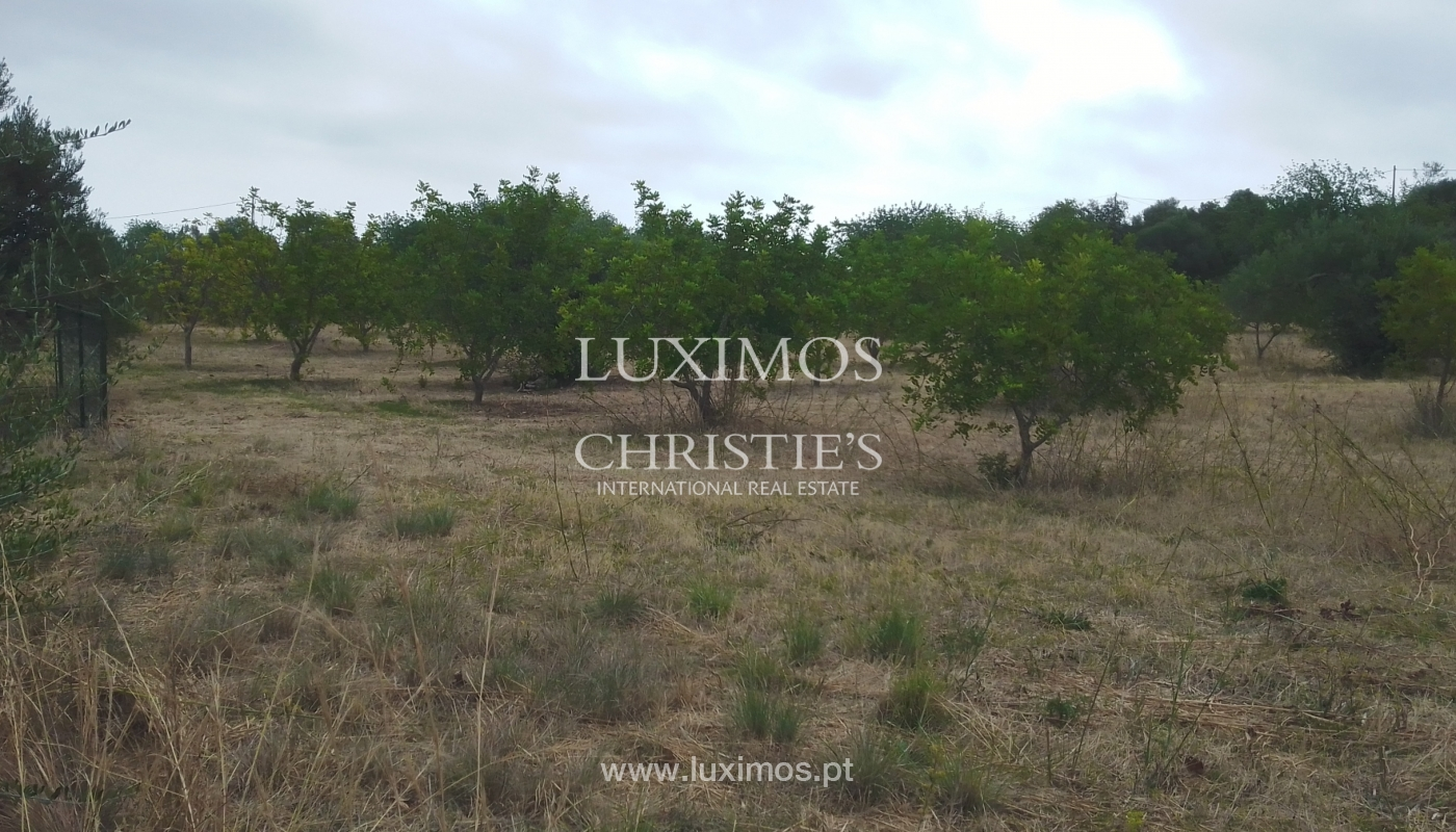 Terreno com possbilidade de construção, Moncarapacho, Algarve_154461