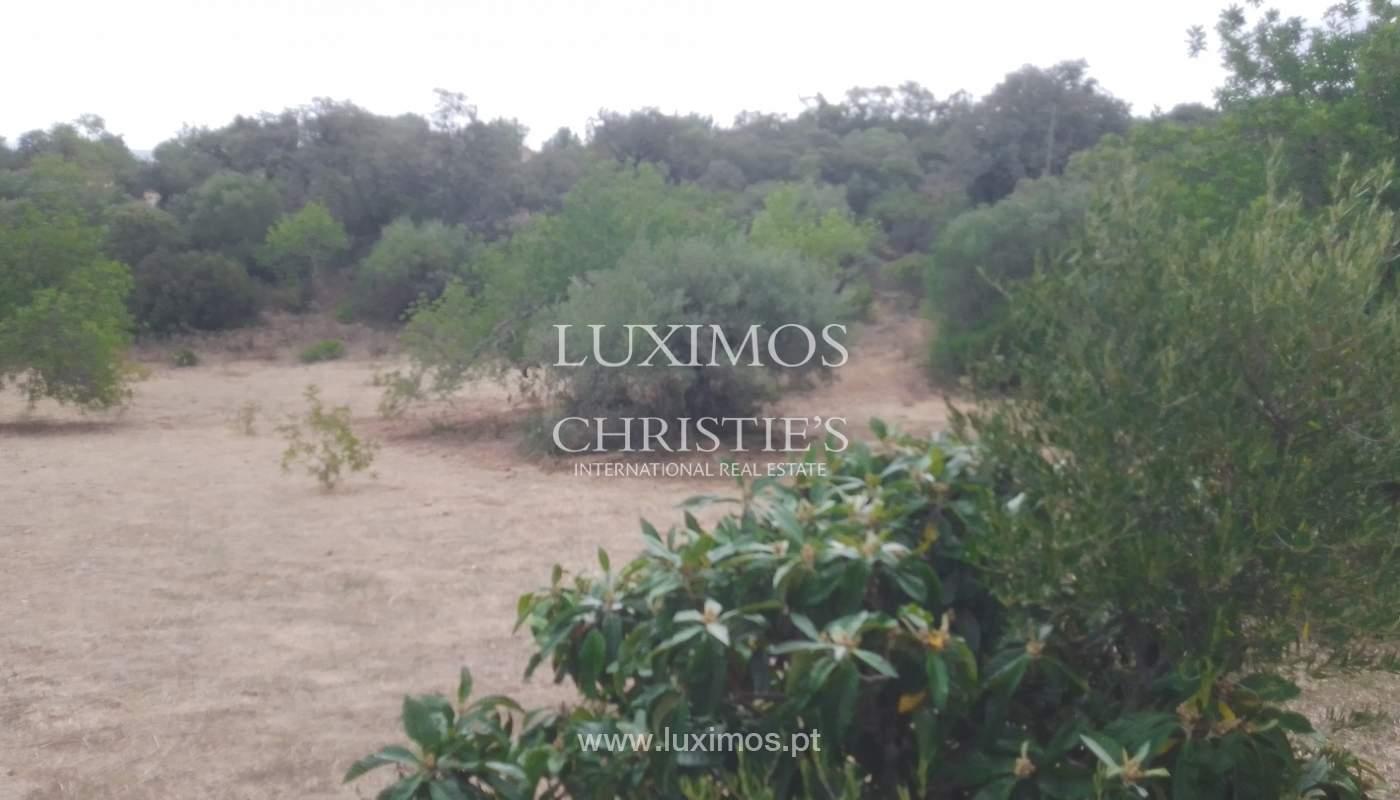 Terreno com possbilidade de construção, Moncarapacho, Algarve_154467