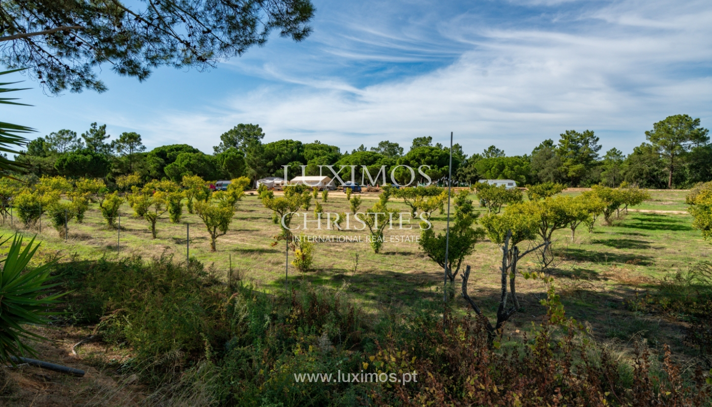 Farm with large plot of land, in the Ria Formosa Natural Park, Faro, Algarve_155941