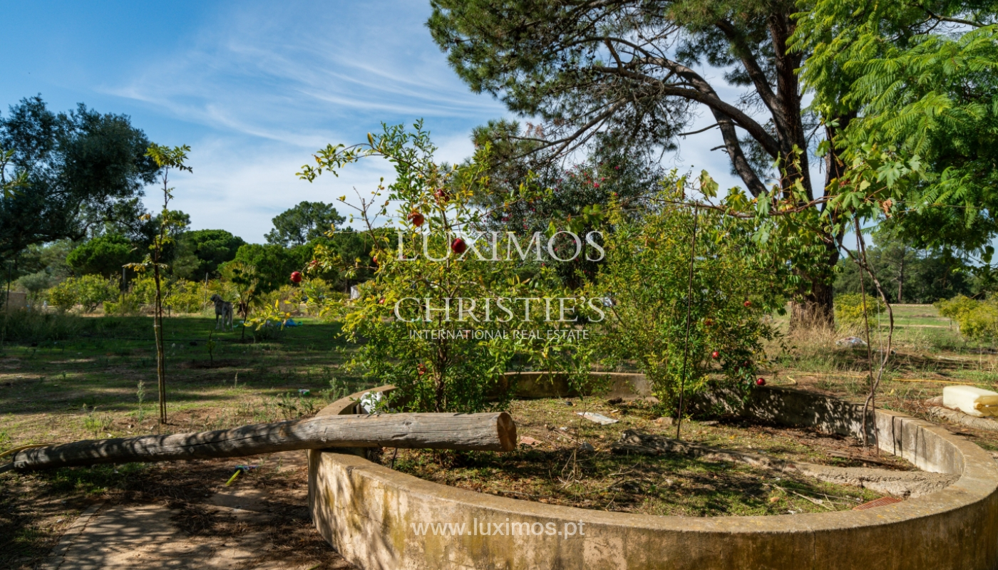 Farm with large plot of land, in the Ria Formosa Natural Park, Faro, Algarve_155945