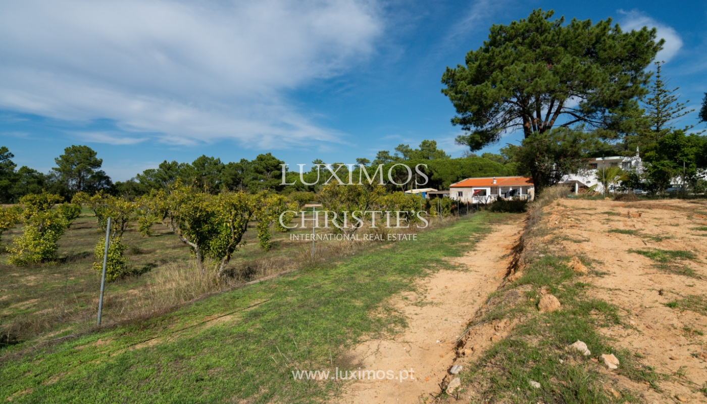 Farm with large plot of land, in the Ria Formosa Natural Park, Faro, Algarve_155947