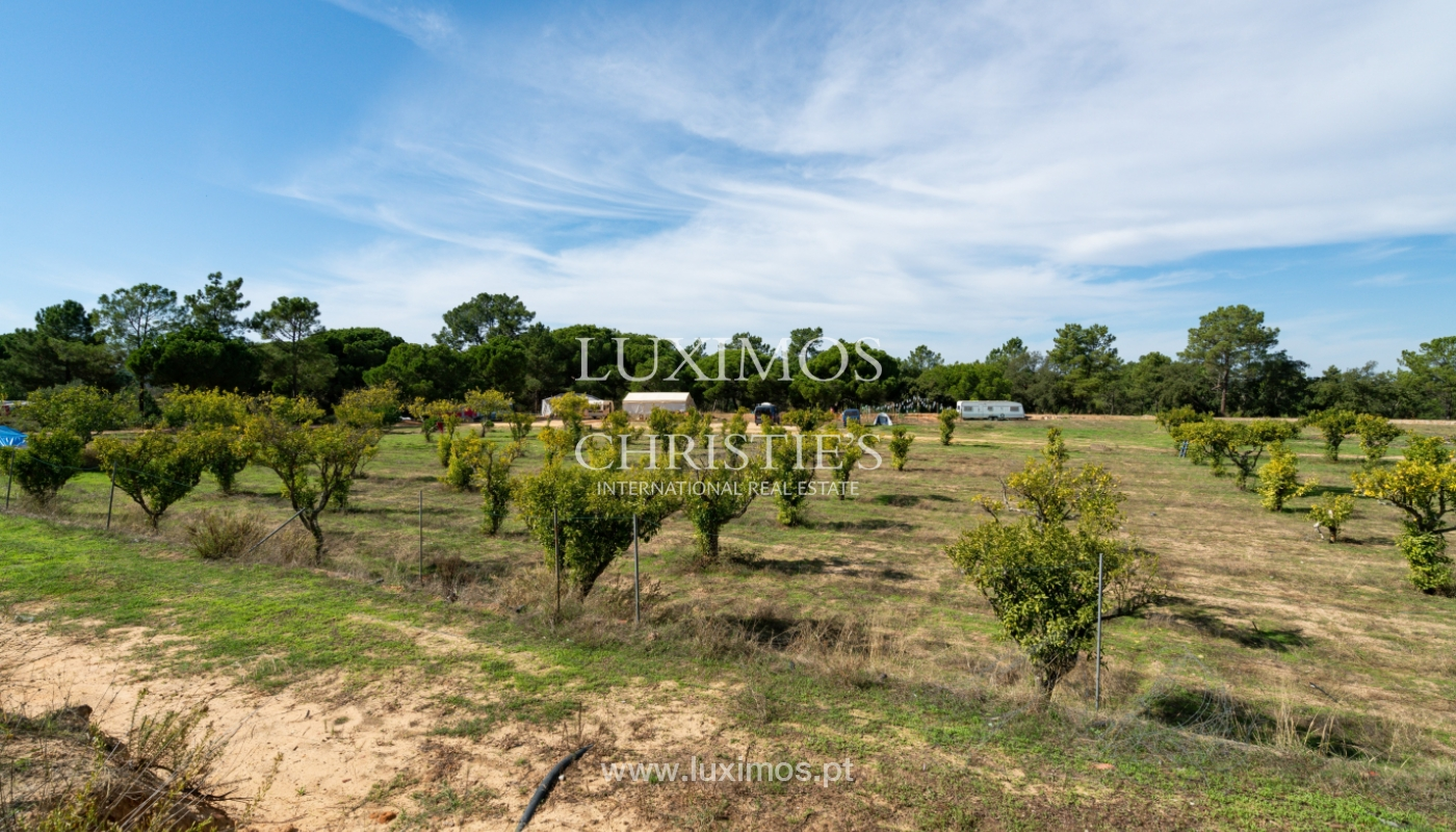 Farm with large plot of land, in the Ria Formosa Natural Park, Faro, Algarve_155948