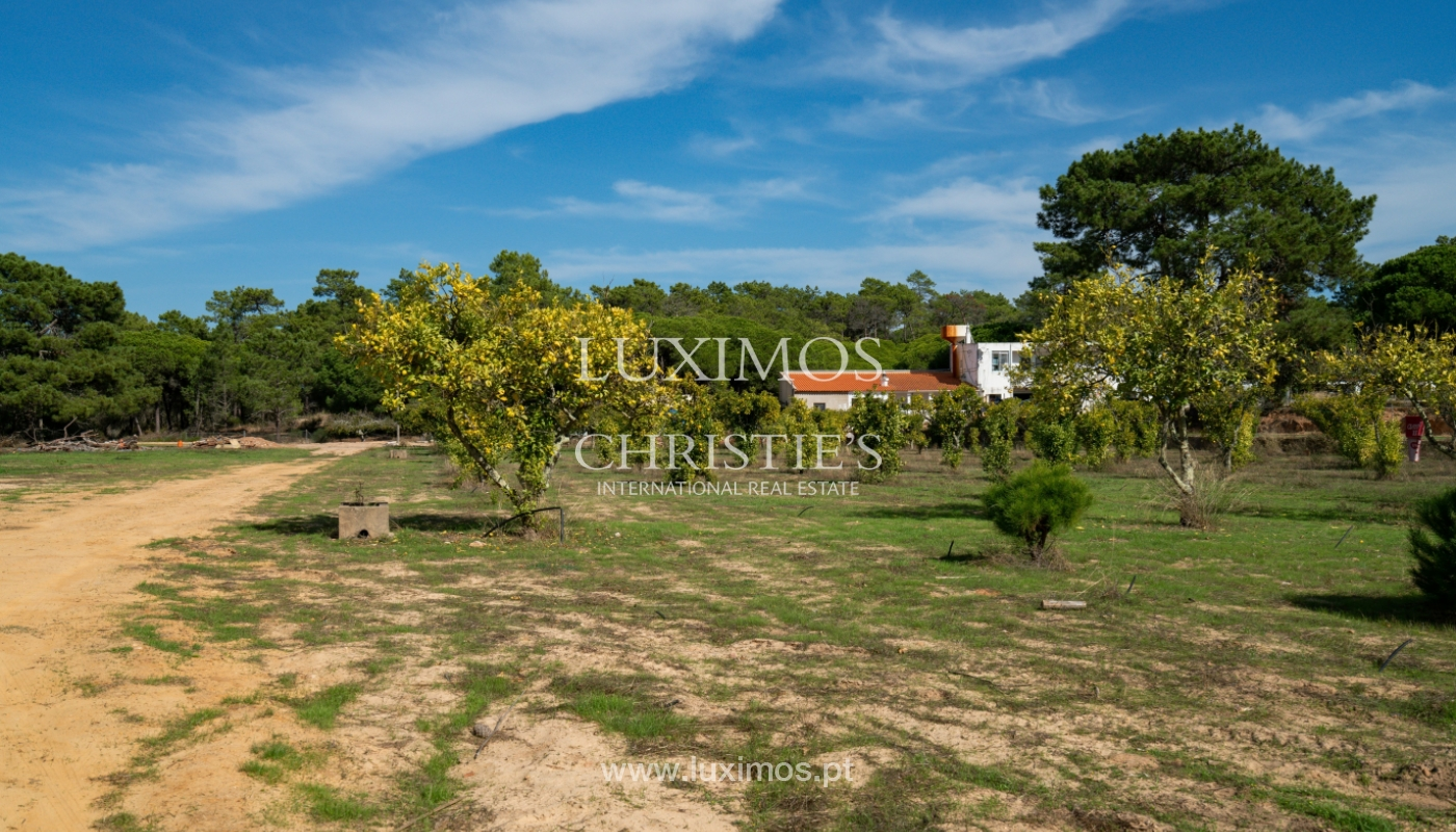 Farm with large plot of land, in the Ria Formosa Natural Park, Faro, Algarve_155950