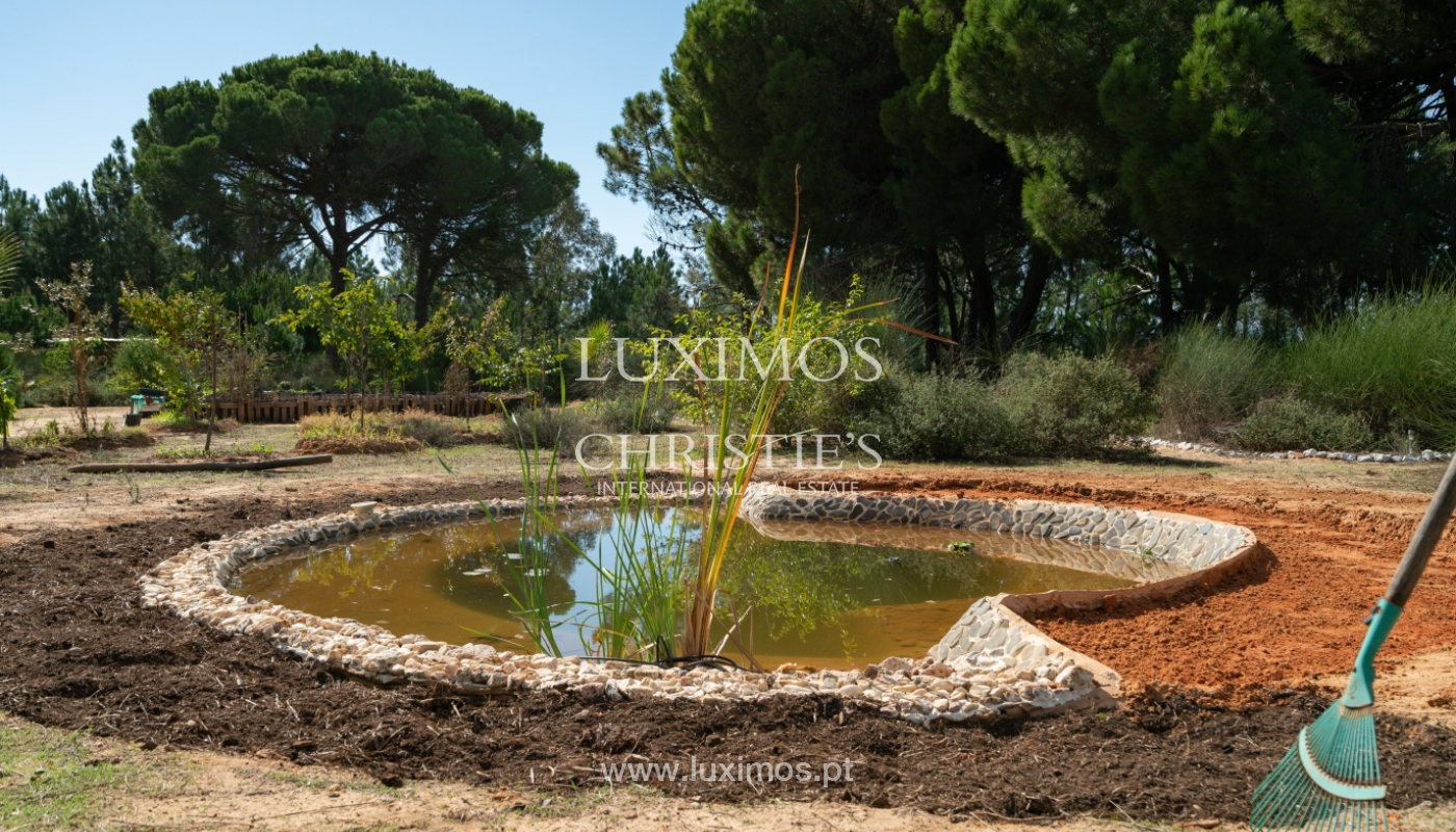 Farm with large plot of land, in the Ria Formosa Natural Park, Faro, Algarve_155953