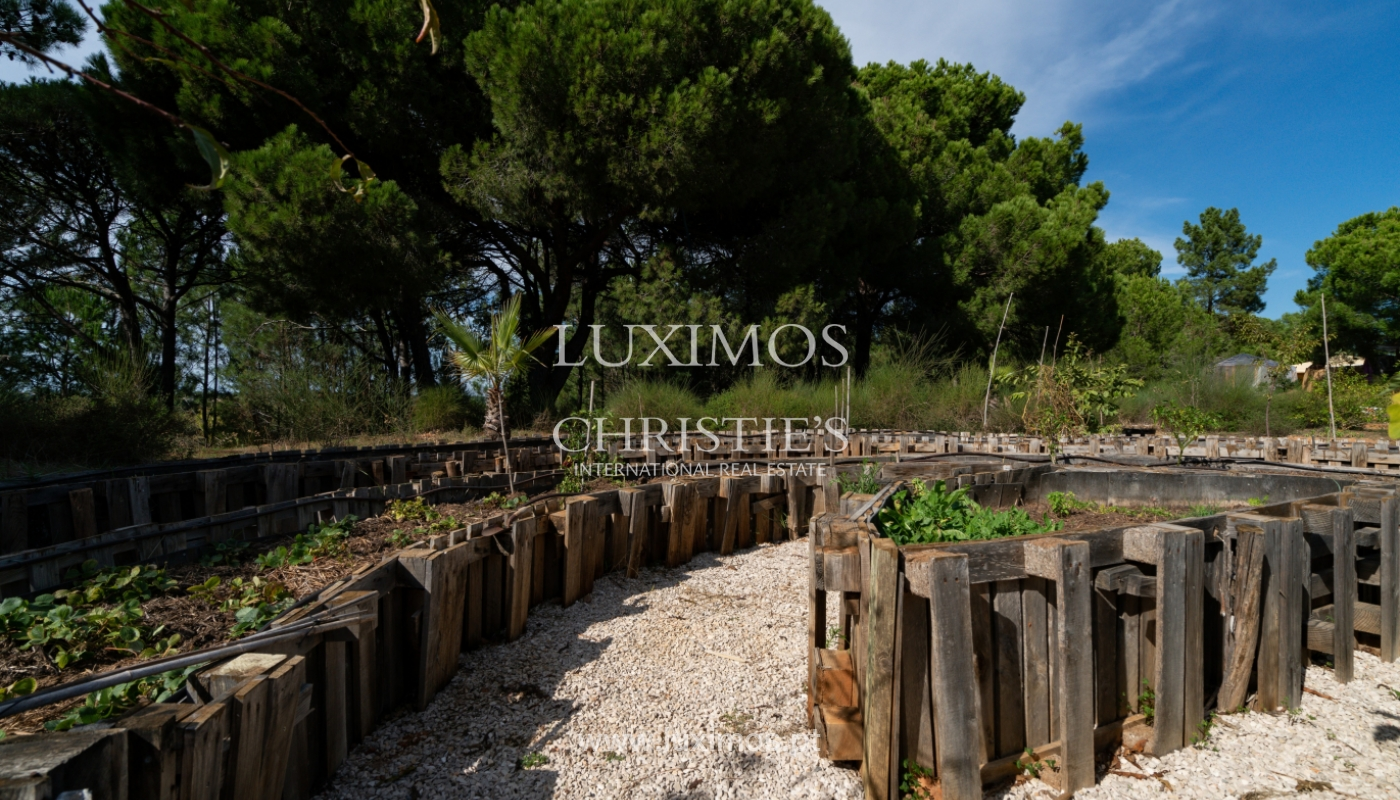 Farm with large plot of land, in the Ria Formosa Natural Park, Faro, Algarve_155955